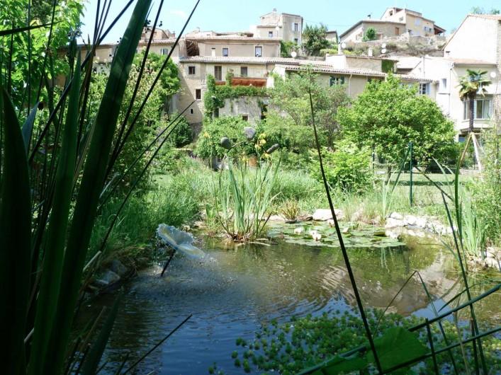 Location de vacances - Gîte à Mollans-sur-Ouvèze - Vue  du gite depuis le fond du jardin