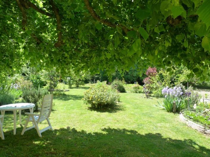 Location de vacances - Gîte à Mollans-sur-Ouvèze - sous le tilleul