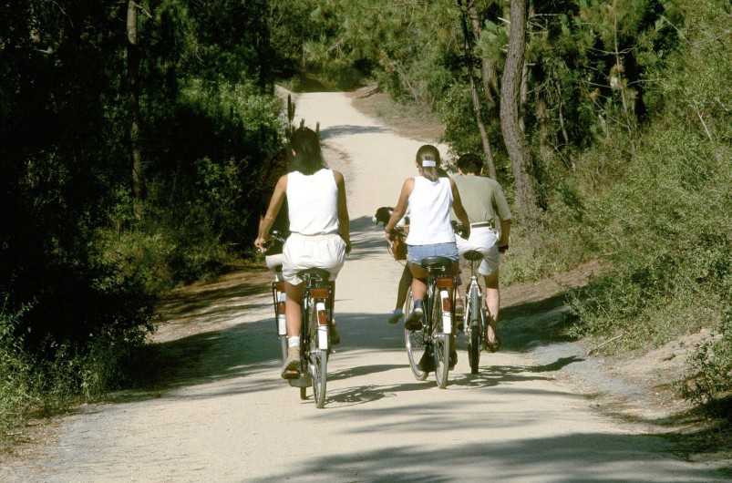Location de vacances - Gîte à Les Clouzeaux - Randonnées à pied ou à vélo autour du gîte