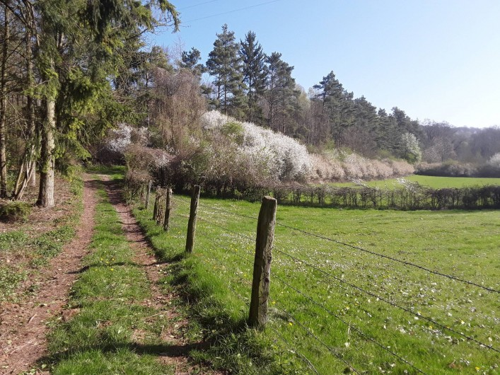 Location de vacances - Gîte à Beaudéduit - Chemin de randonnée proche du gîte.