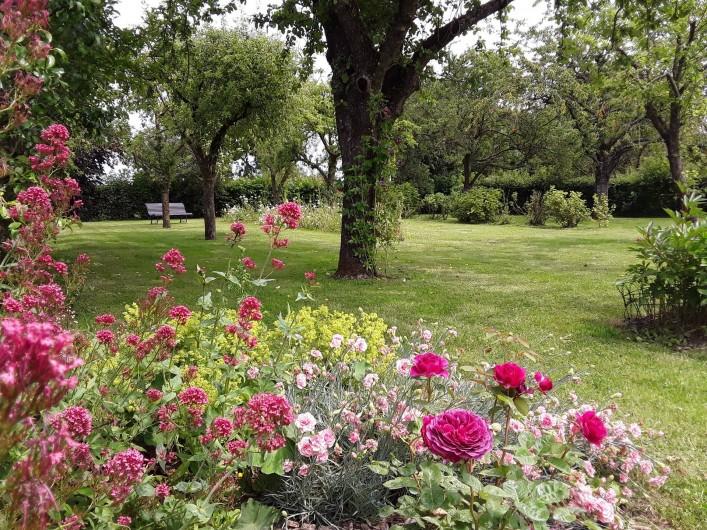 Location de vacances - Gîte à Beaudéduit - Jardin du gîte.