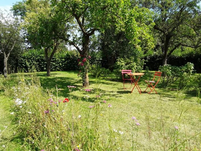 Location de vacances - Gîte à Beaudéduit - Jardin du gîte