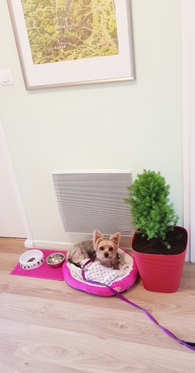 Location de vacances - Appartement à Xonrupt-Longemer - Il/Elle sera Bienvenu(e), on prépare tout pour son confort