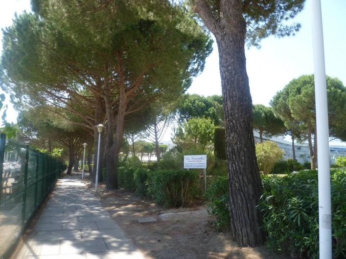 Location de vacances - Appartement à Le Grau-du-Roi - Chemin piéton pour se rendre à la plage